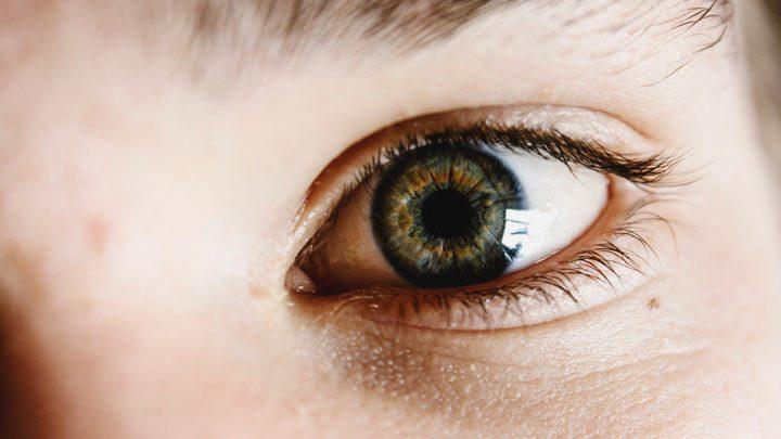 liana engelbrecht optometrist